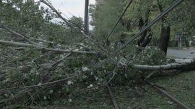 Der Sturm verursachte schweren Schaden der fallenden Neigung der elektrischen Pfosten stock video
