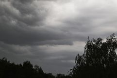 Der Sturmhimmel über Bäumen Stockbilder
