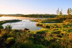 Der Sumpfgebiet- und Baumsonnenaufgang Stockfoto