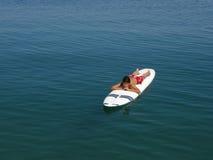 Der surfende Junge und genießen in den Ferien in Kroatien Stockbilder