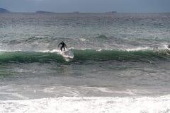 Der Surfer nimmt eine Welle, auf einem Surfbrett, Dias entlang der Welle, im Hintergrund des Berges, Sorrent Italien lizenzfreie stockbilder