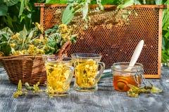 Der Tee, der vom Kalk und vom Honig gemacht wurde, diente im Sommer stockbild