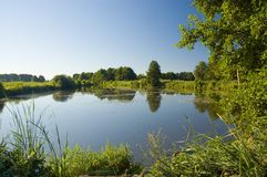 Der Teich Stockbilder