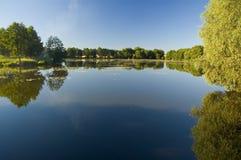 Der Teich Lizenzfreies Stockbild