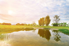 Der Teich im Ackerland Lizenzfreies Stockbild