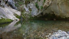 Der Teich in der Steinschüssel stock video