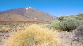 Der Teide-Vulkan stock video footage