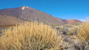 Der Teide-Vulkan Pico del Teide stock footage