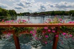 der termal See Heviz, Ungarn Stockbild