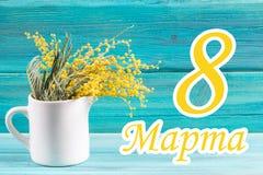 Der Text auf russisch: vom 8. März Internationaler Frauen ` s Tag Mimose in einem weißen Becher Lizenzfreie Stockbilder