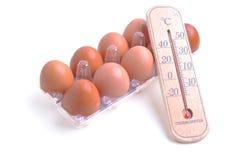 Der Thermometer, der auf Eier legt Lebensmittel und Gesundheitswesen begrifflich Lizenzfreies Stockbild