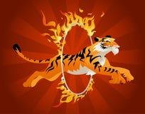Der Tiger springend durch ein Band des Feuers. Lizenzfreies Stockfoto