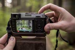 Der Tourist, der eine Kamera hält und machen Bilder vom Wald Lizenzfreie Stockfotos