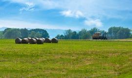 Der Traktor auf dem Feld erfasst Heu Lizenzfreies Stockfoto