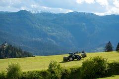 Der Traktor, der das Gras von der Wiese sammelt Stockfotografie