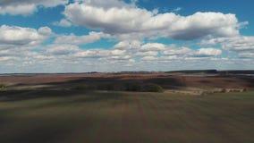 Der Traktor pfl?gt den Boden auf dem Feld zu Beginn der pflanzenden Jahreszeit Die Kamera fliegt ?ber das Feld stock footage