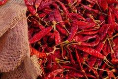 Der trockene Paprika ist Gewürz Lizenzfreie Stockfotos