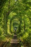 Der Tunnel der Liebe auf der Eisenbahn Lizenzfreies Stockbild