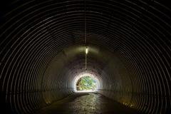 Der Tunnel, der zu die Natur nahe Staubbach führt, fällt Lizenzfreie Stockfotografie