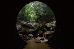 Der Tunnel zum Wald Lizenzfreie Stockbilder