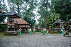 Der Ubud-Affe-Wald, Bali, Indonesien Lizenzfreie Stockfotos