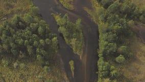 Der Vassfaret-Wald stock video footage