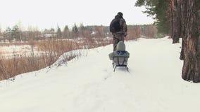 Der Vater nimmt das Kind auf einem Schlitten durch das Holz stock video footage