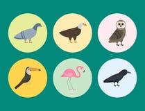Der Vektorillustration der Vogelspeziessammlung tropische Federhaustiere unterschiedlichen des wilden Tieres Avifauna Charaktere Stockfotografie