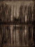 Der verlassene Teich Lizenzfreie Stockfotos
