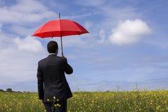 Der Versicherungsagent lizenzfreies stockbild