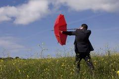 Der Versicherungsvertreter Lizenzfreies Stockfoto
