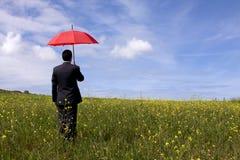 Der Versicherungsvertreter Lizenzfreies Stockbild