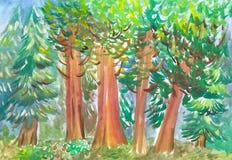 Der verzauberte Wald Stockbild
