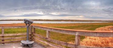 Der Vogelzuschauer, der das Sumpfgebiet übersehen und der Sumpf beim Myakka Rive lizenzfreie stockfotos