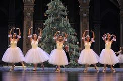 Der Vorhanganruf-c$d Ballett-Nussknacker Stockfoto