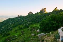 Der Wald auf dem Gebirgssonnenuntergang Stockbild