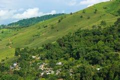 Der Wald in Nord-Thailand Stockfotografie