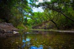 Der Wald und der Fluss in sieben Frühlinge parken in Rhodos stockfoto