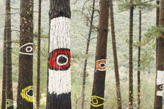 Der Wald von Oma, Urdaibai-Biosphären-Reserve Stockbilder