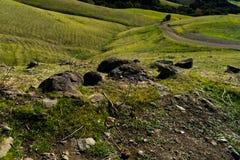 Der Wanderweg im Hügel lizenzfreie stockfotografie