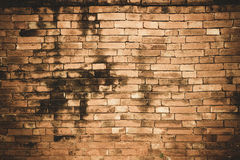 Der Wandziegelsteinhintergrund Stockfotos