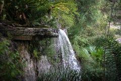 Der Wasserfall der Natur Stockbilder