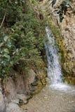 Der Wasserfall im Nationalpark Ein Gedi Lizenzfreie Stockfotos