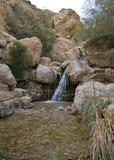 Der Wasserfall im Nationalpark Ein Gedi Lizenzfreies Stockfoto