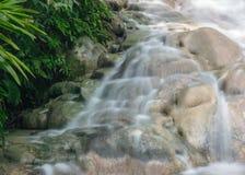 Der Wasserfall im tropischen Wald Stockbild