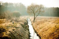 Der Wasserkanal zwischen den Feldern Stockbild