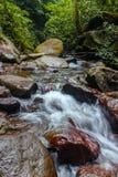 Der Wasserstrom Lizenzfreie Stockfotos