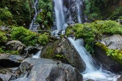 Der Wasserstrom im Dschungel Stockfoto