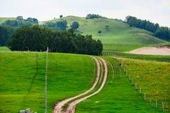 Der Weg auf der grünen Wiese Lizenzfreies Stockfoto