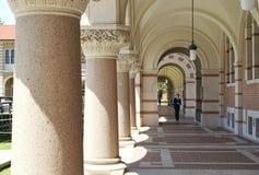 Der Weg der Hochschulbildung Lizenzfreie Stockfotos